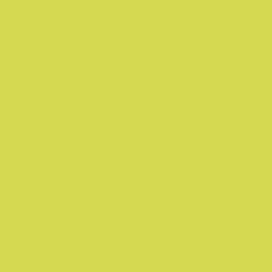 kiwi-sorbet